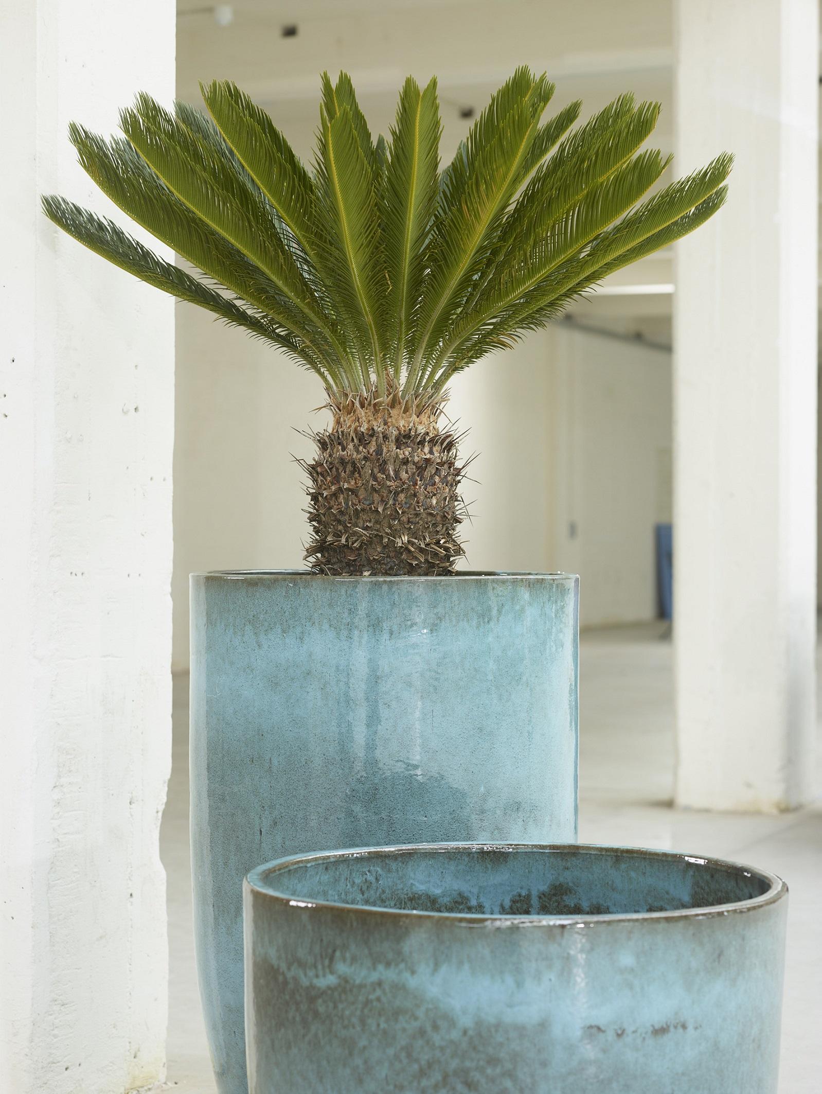 Grote Plantenbak Binnen.Bloempotten En Plantenbakken Potten Outdoor Indoor Keramiek